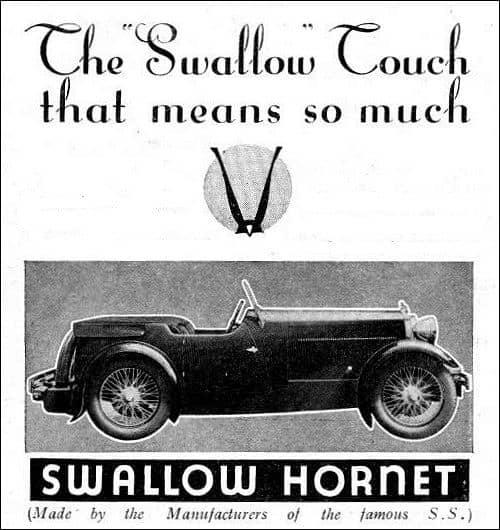 Swallow Hornet