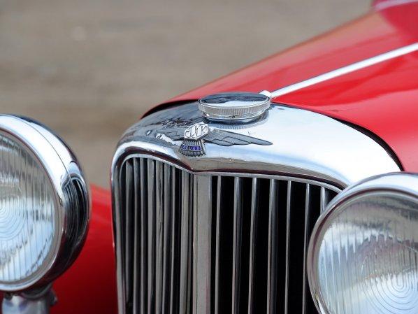 SS Jaguar Emblem