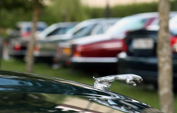 Эмблема автомобилей Ягуар
