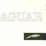 Jaguar Mark X USA broshure 1964