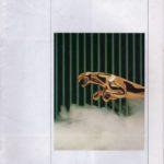 Jaguar Range 1988